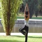 Qi Cong posture