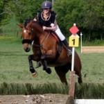 cavalier et son cheval prêts à sauter l'obstacle